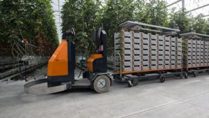 AGV tow tractor for horticulture