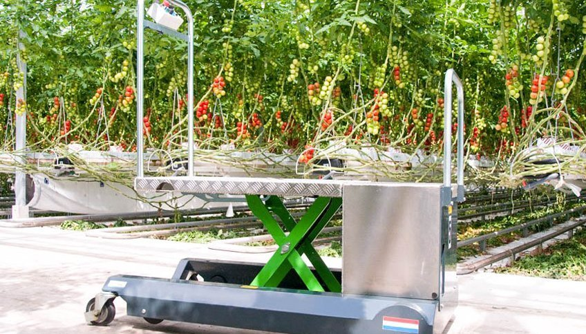 Berkvens Greencart leaf picking trolley | Steenks Service